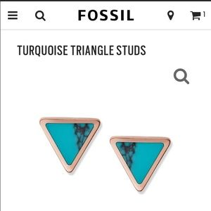 Fossil Earings!